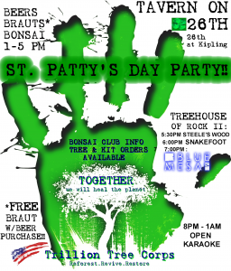 St. Patty's Day Party